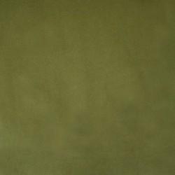 Ashley Wilde Alaska Fern - Ύφασμα Κουρτίνας και επίπλωσης